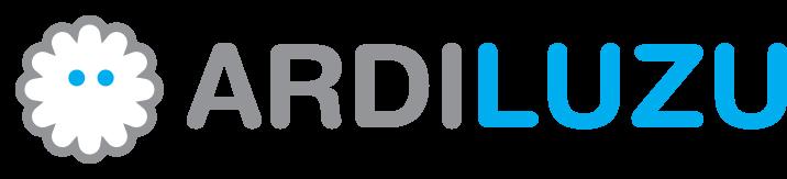 ardiluzu graphic recording